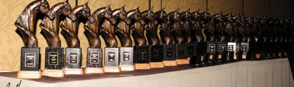 APAHA horsemanship awards